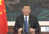 """대만 언론, """"시진핑의 WHO 화상총회 연설은 대체현실"""""""