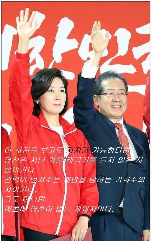 한 네티즌이 박근혜 대통령 탄핵에 앞장섰던 나경원 의원이 선대위원장에 임명돼, 홍준표 후보와 나란히 선 사진에 의견을 적어 인터넷에 올리자, 큰 공감을 얻었다. 사진은 일간베스트 캡쳐.