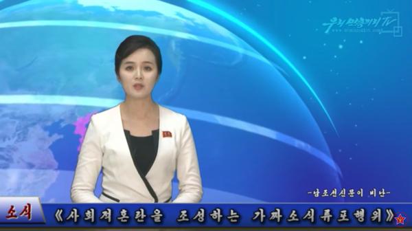 ▲ 북한의 매체가 또다시 '미디어워치TV'를 음해하고 나섰다. 사진은 유튜브 '붉은별TV' 캡처.